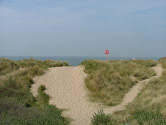 20.cote-dunes-oyats