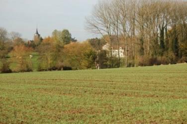 45.relief-moyenne-B-paysage-Brabant-wallon